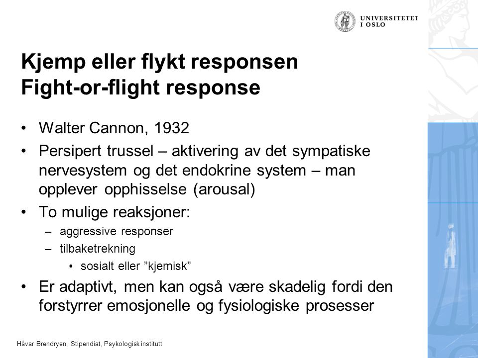 Kjemp eller flykt responsen Fight-or-flight response
