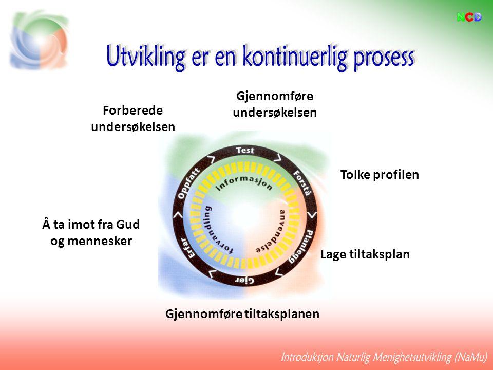 Å ta imot fra Gud og mennesker Gjennomføre tiltaksplanen