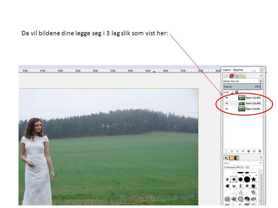 Da vil bildene dine legge seg i 3 lag slik som vist her: