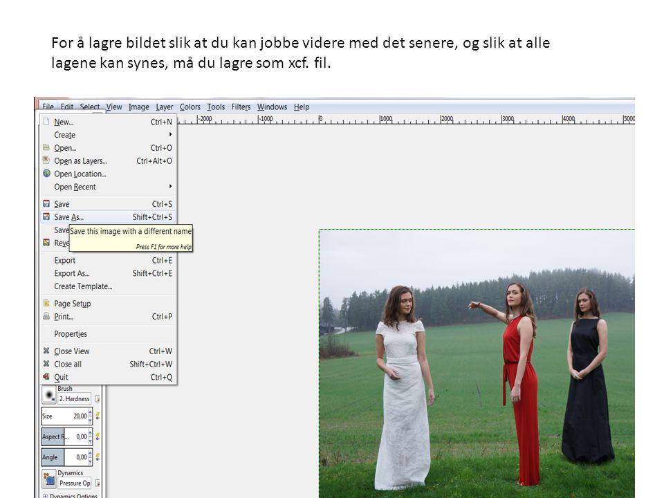 For å lagre bildet slik at du kan jobbe videre med det senere, og slik at alle lagene kan synes, må du lagre som xcf.