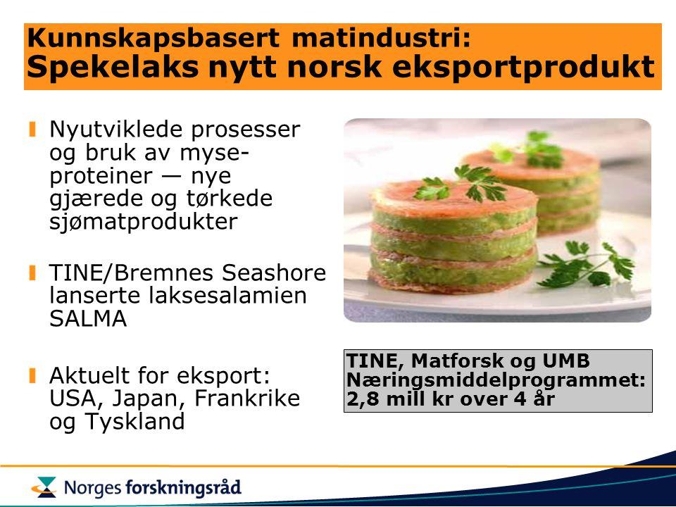 Kunnskapsbasert matindustri: Spekelaks nytt norsk eksportprodukt