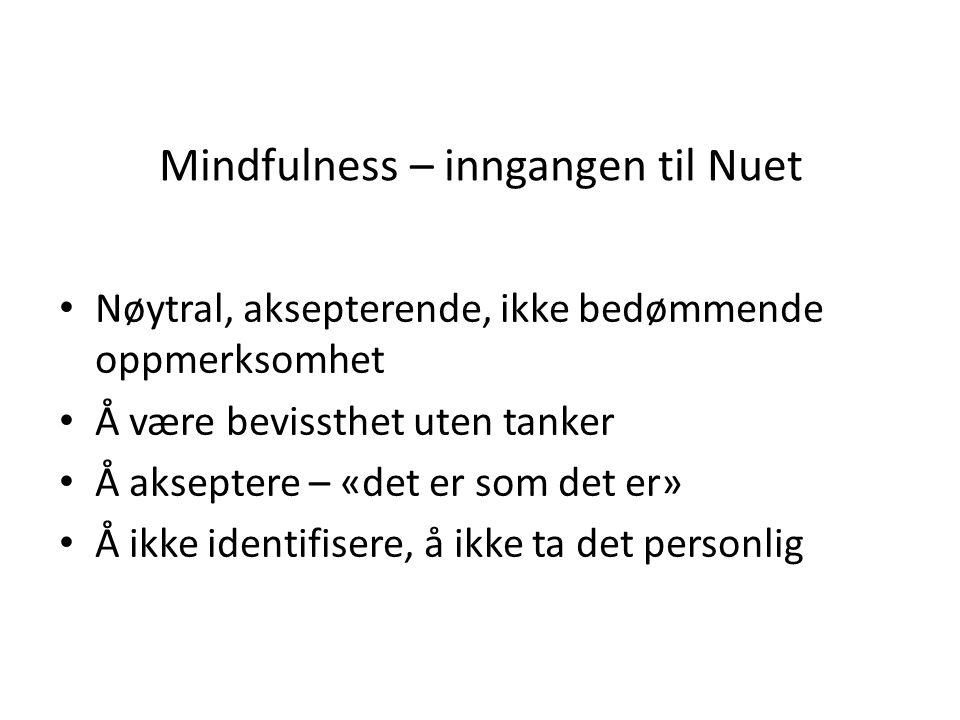 Mindfulness – inngangen til Nuet
