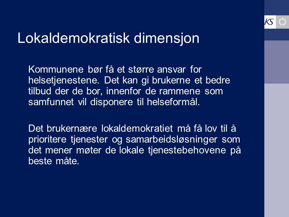 Lokaldemokratisk dimensjon