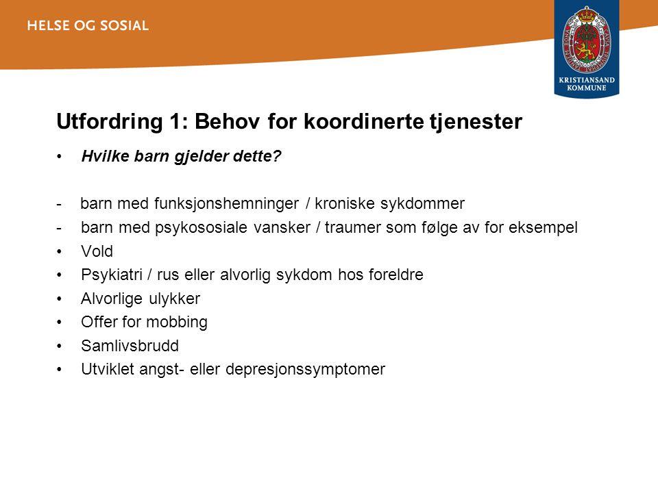 Utfordring 1: Behov for koordinerte tjenester