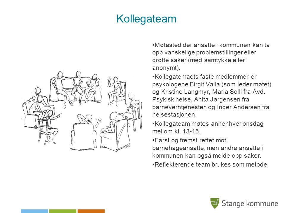 Kollegateam Møtested der ansatte i kommunen kan ta opp vanskelige problemstillinger eller drøfte saker (med samtykke eller anonymt).