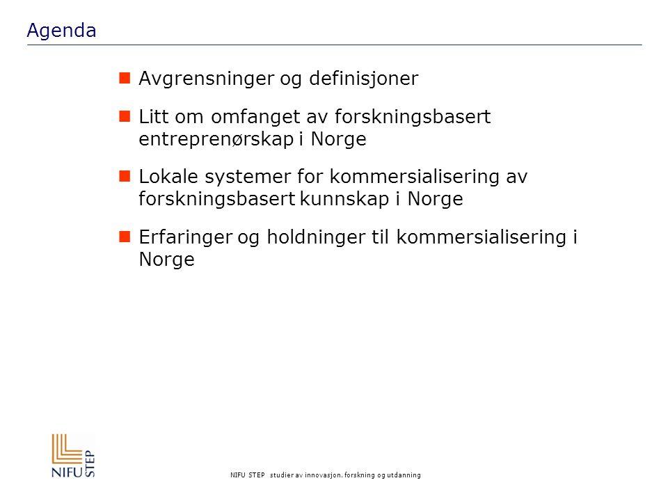 Agenda Avgrensninger og definisjoner. Litt om omfanget av forskningsbasert entreprenørskap i Norge.