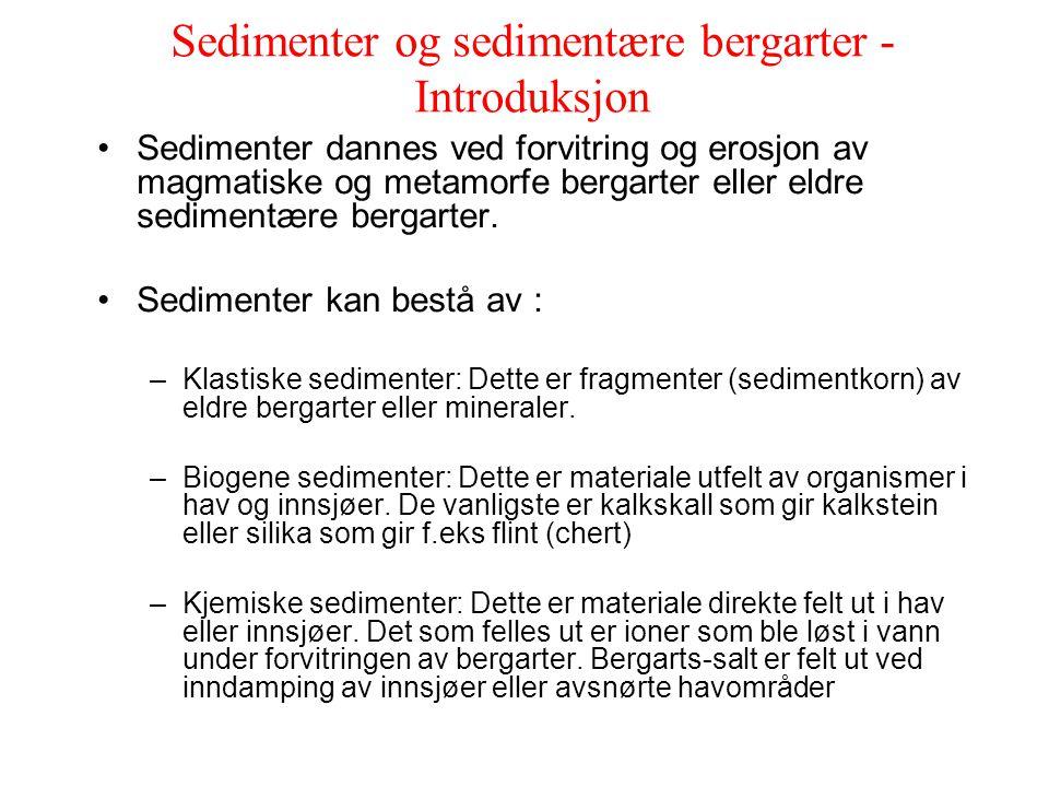 Sedimenter og sedimentære bergarter -Introduksjon