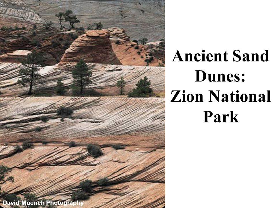 Ancient Sand Dunes: Zion National Park