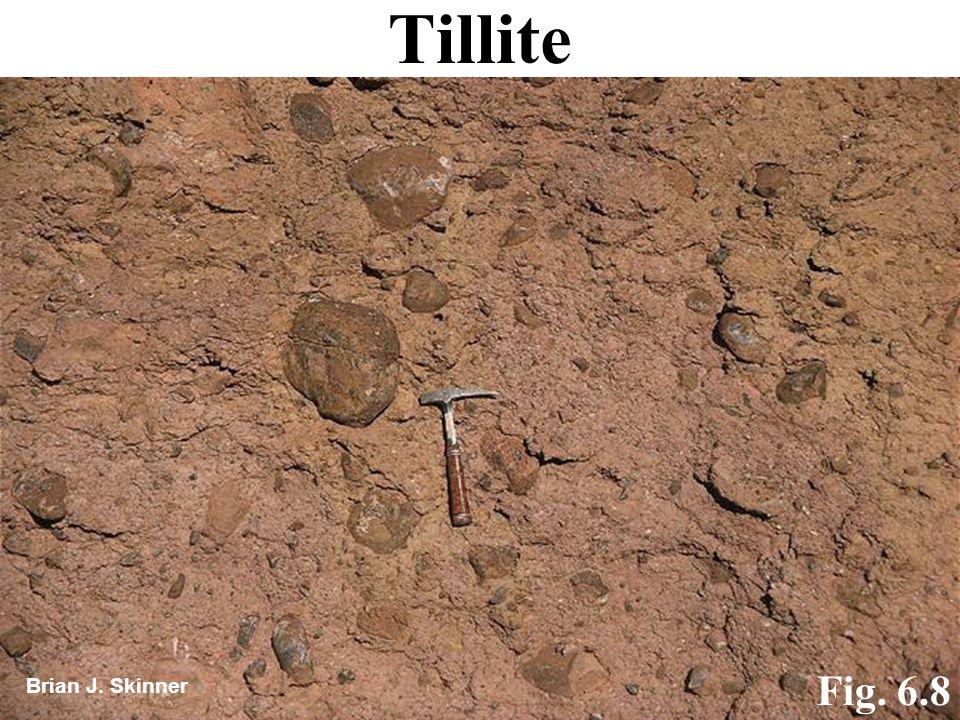 Tillite Fig. 6.8 Brian J. Skinner