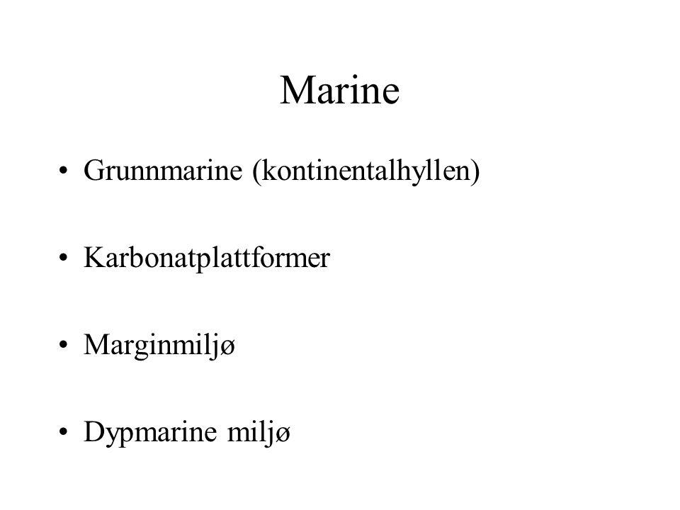 Marine Grunnmarine (kontinentalhyllen) Karbonatplattformer Marginmiljø