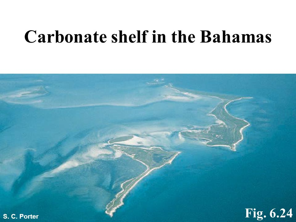 Carbonate shelf in the Bahamas