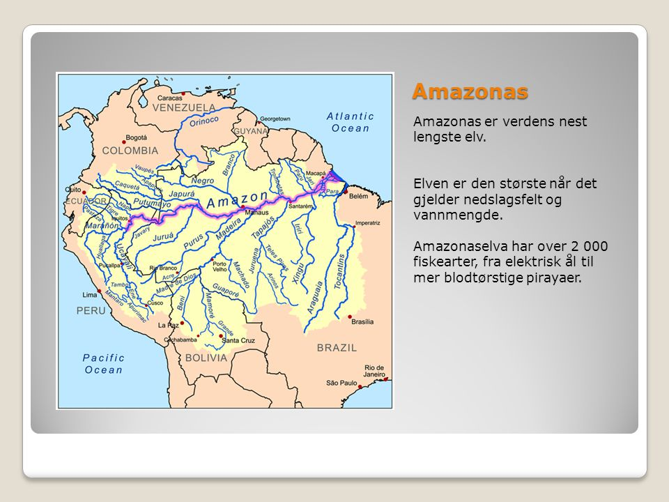 Amazonas Amazonas er verdens nest lengste elv.