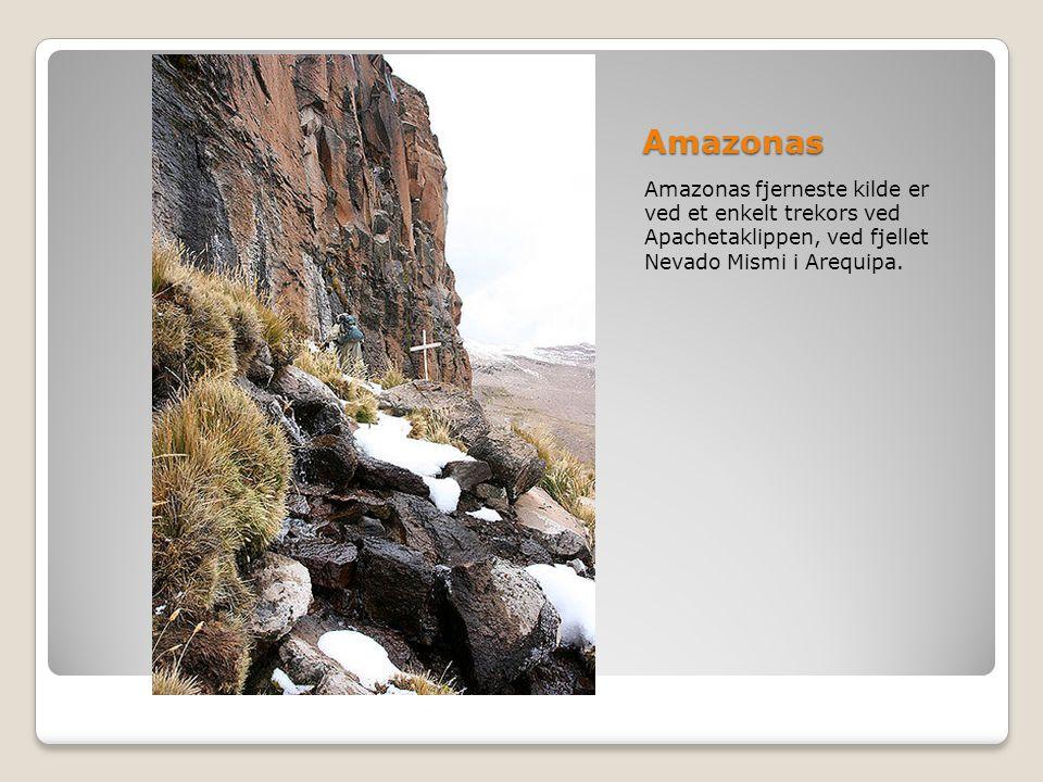 Amazonas Amazonas fjerneste kilde er ved et enkelt trekors ved Apachetaklippen, ved fjellet Nevado Mismi i Arequipa.