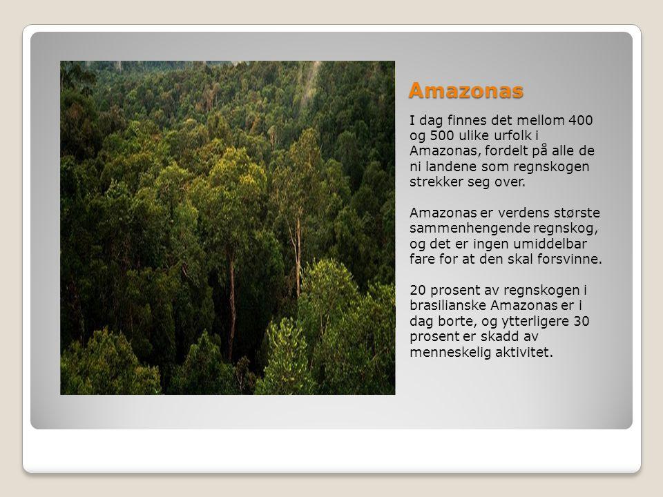 Amazonas I dag finnes det mellom 400 og 500 ulike urfolk i Amazonas, fordelt på alle de ni landene som regnskogen strekker seg over.