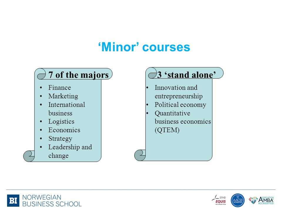 'Minor' courses 7 of the majors 3 'stand alone' Finance Marketing