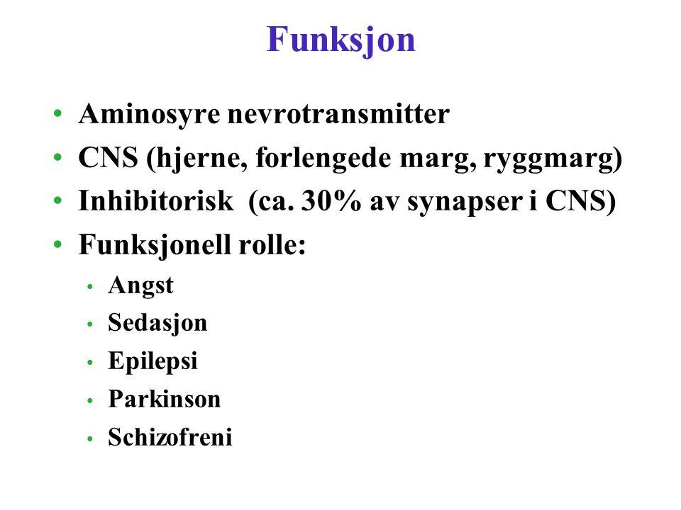 Funksjon Aminosyre nevrotransmitter