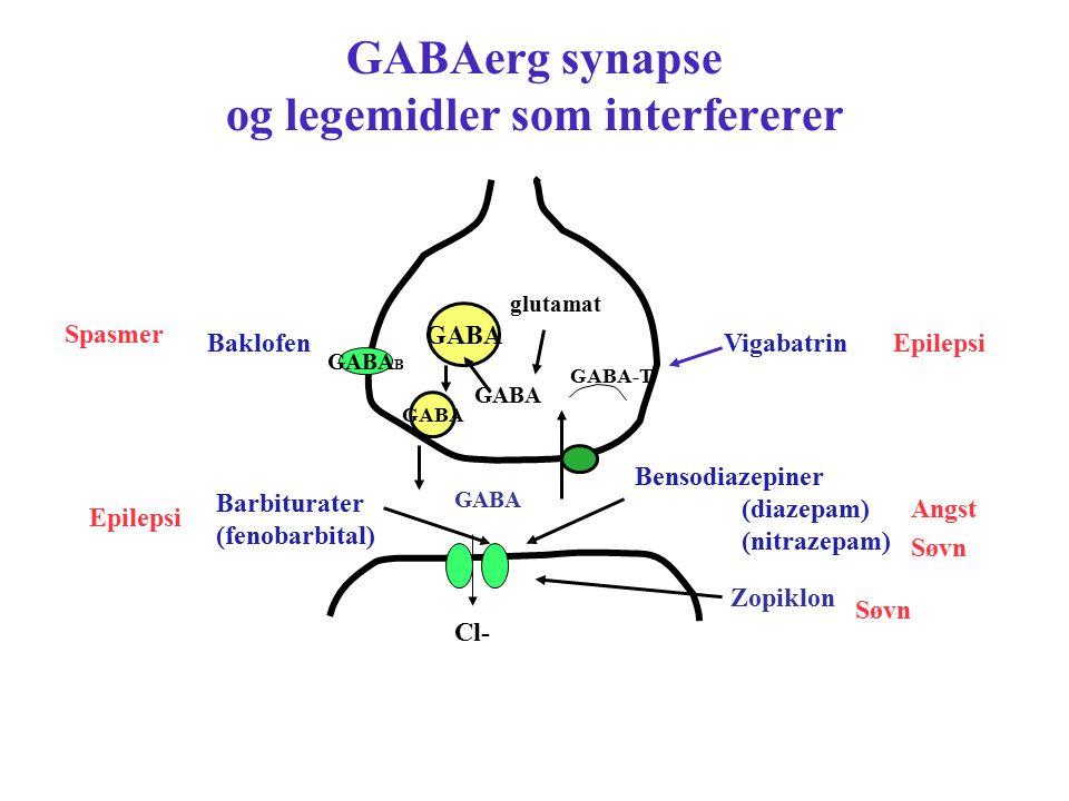 GABAerg synapse og legemidler som interfererer