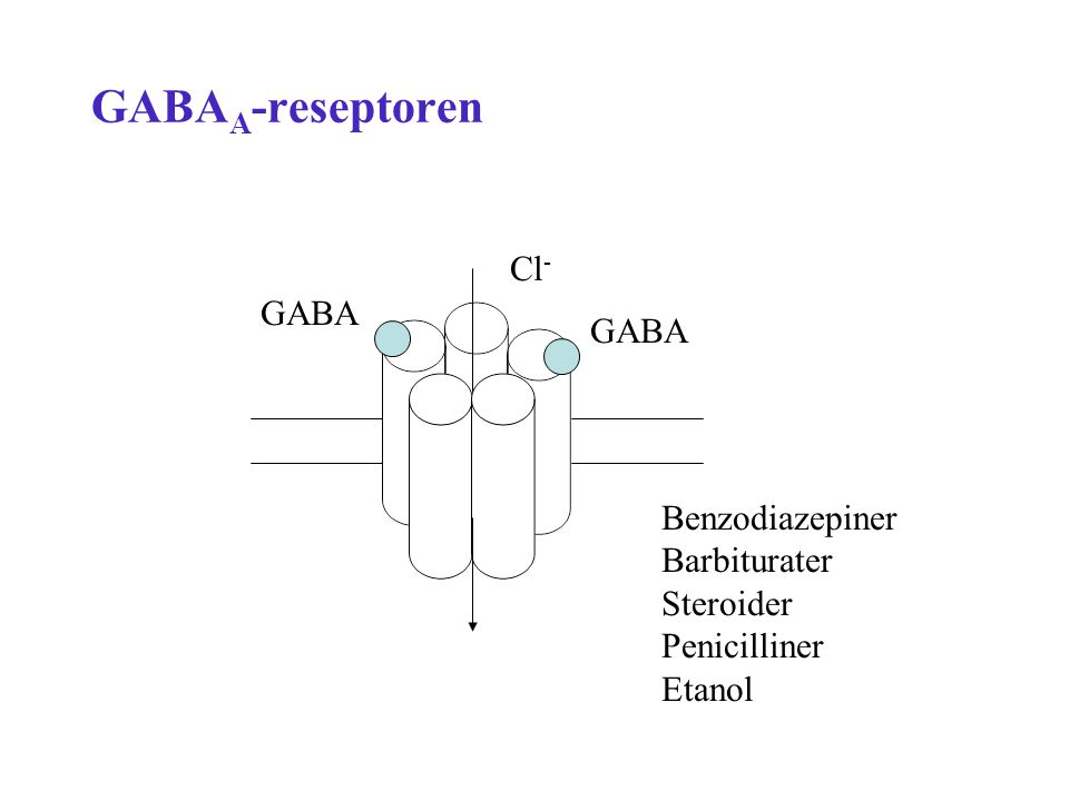 GABAA-reseptoren Cl- GABA GABA