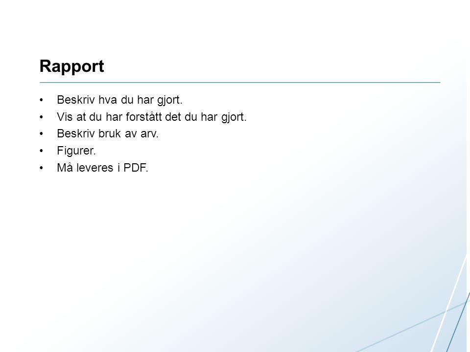 Rapport Beskriv hva du har gjort.