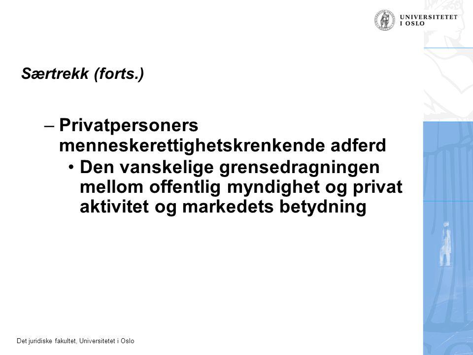 Privatpersoners menneskerettighetskrenkende adferd