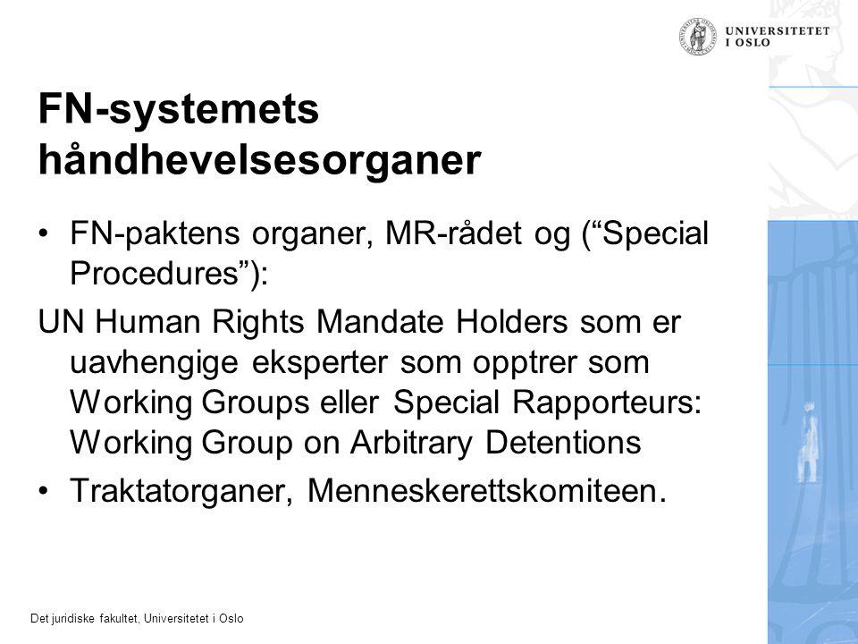 FN-systemets håndhevelsesorganer
