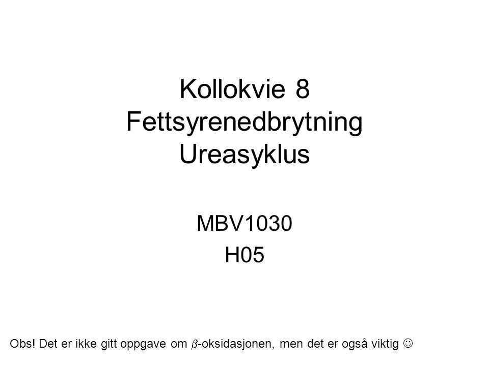 Kollokvie 8 Fettsyrenedbrytning Ureasyklus