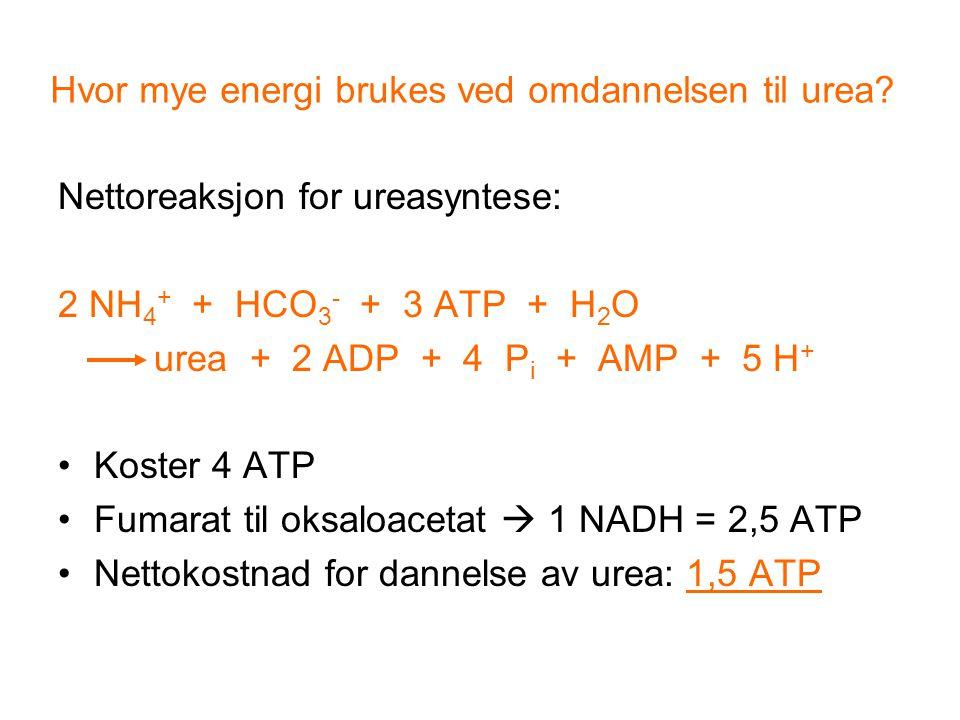Hvor mye energi brukes ved omdannelsen til urea