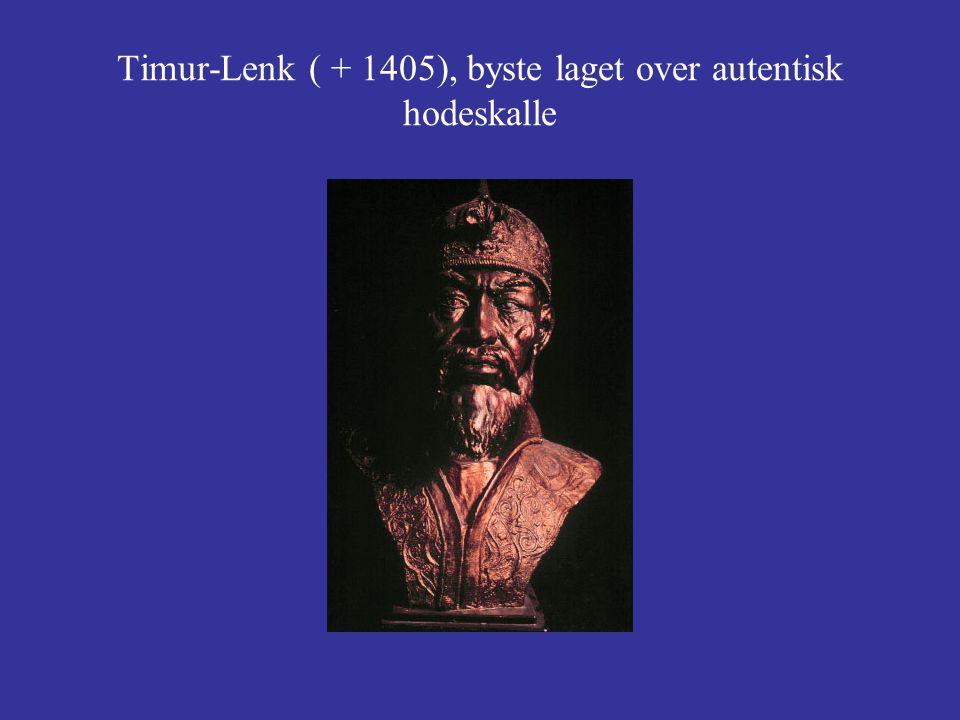 Timur-Lenk ( + 1405), byste laget over autentisk hodeskalle