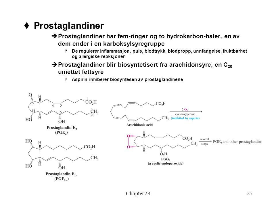 Prostaglandiner Prostaglandiner har fem-ringer og to hydrokarbon-haler, en av dem ender i en karboksylsyregruppe.
