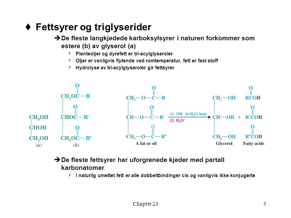 Fettsyrer og triglyserider