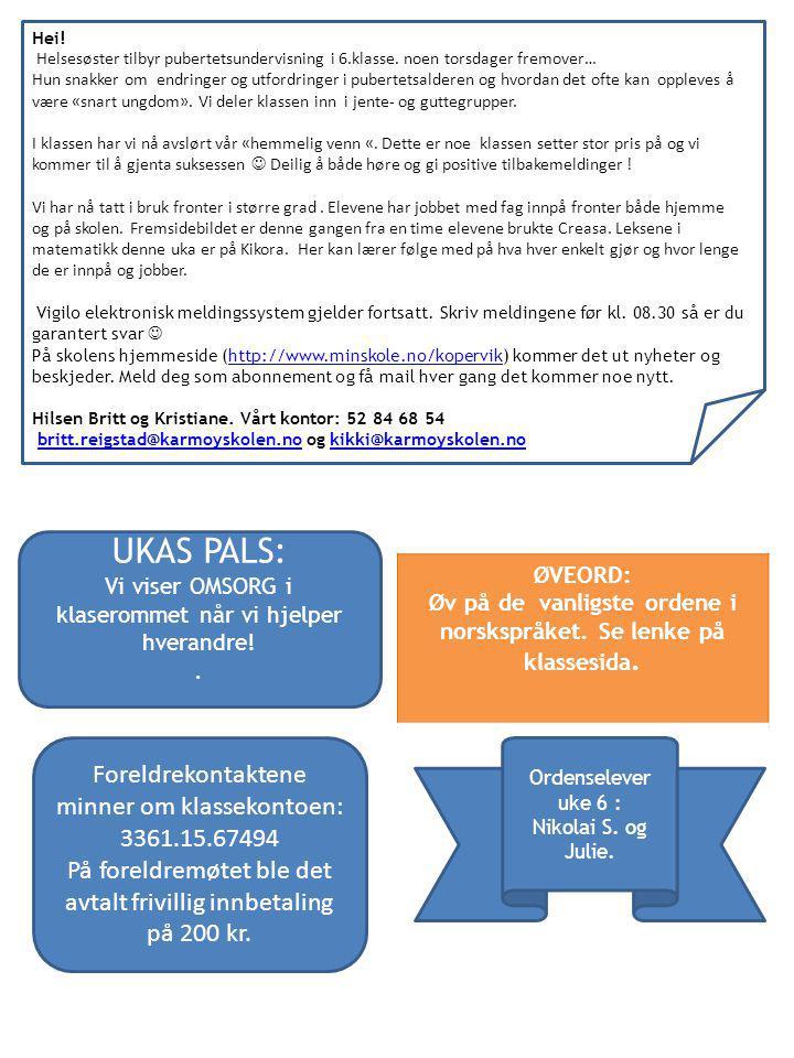Øv på de vanligste ordene i norskspråket. Se lenke på klassesida.
