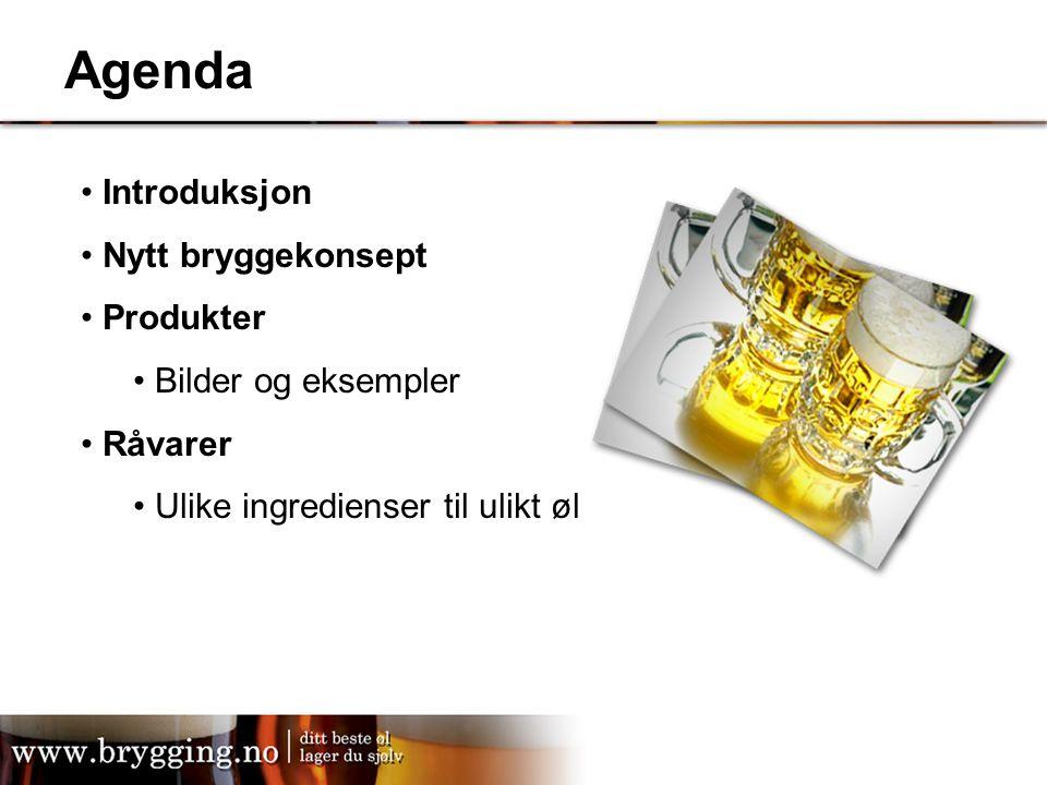 Agenda Introduksjon Nytt bryggekonsept Produkter Bilder og eksempler