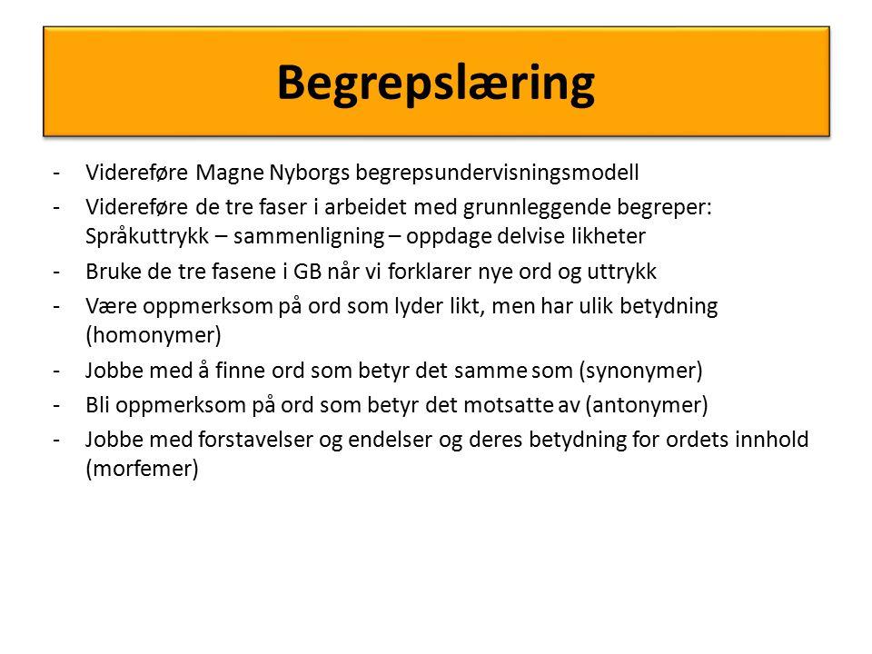 Begrepslæring Videreføre Magne Nyborgs begrepsundervisningsmodell