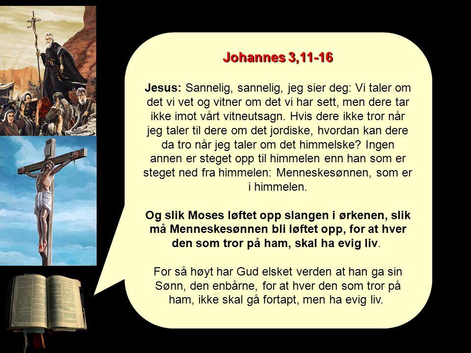 Johannes 3,11-16