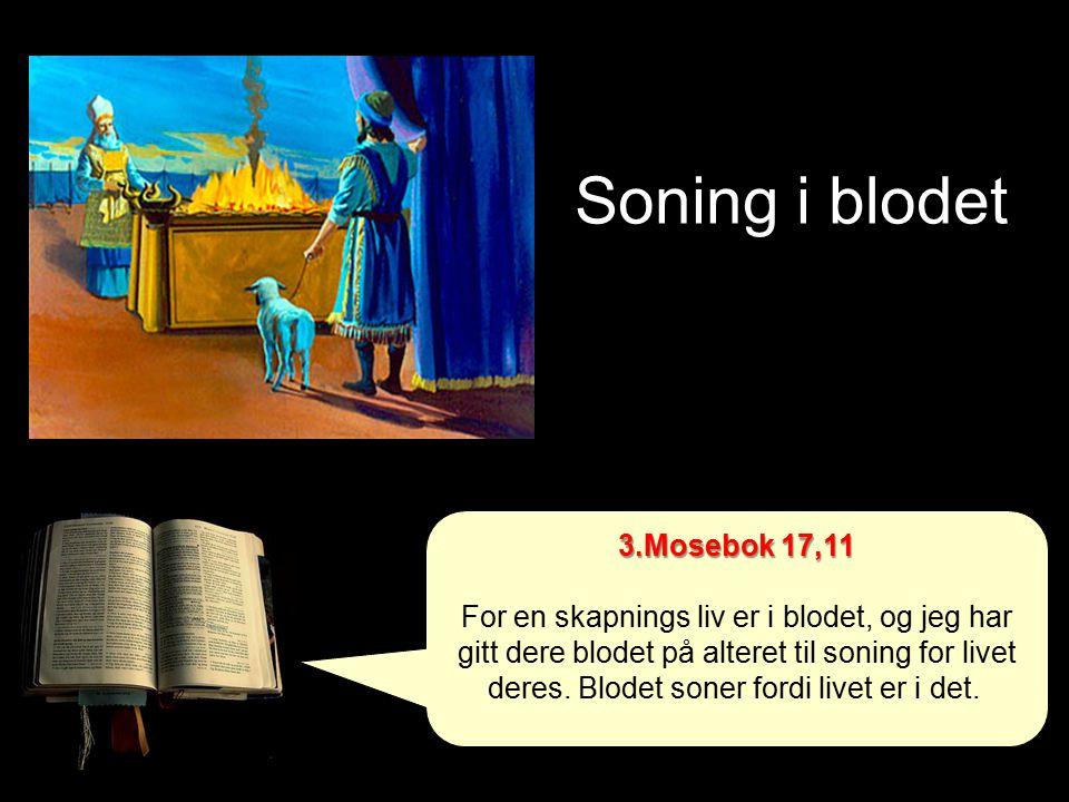 Soning i blodet 3.Mosebok 17,11