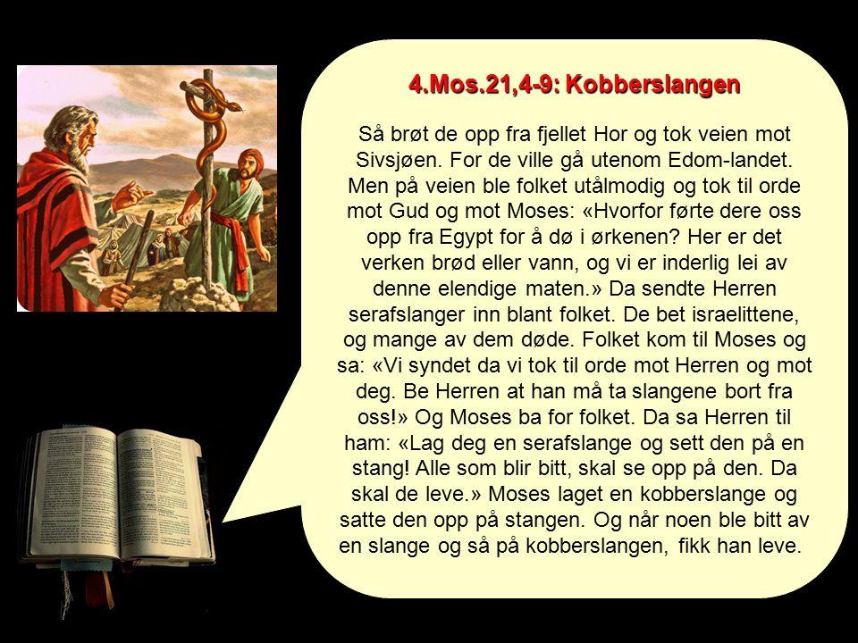 4.Mos.21,4-9: Kobberslangen Så brøt de opp fra fjellet Hor og tok veien mot Sivsjøen. For de ville gå utenom Edom-landet.