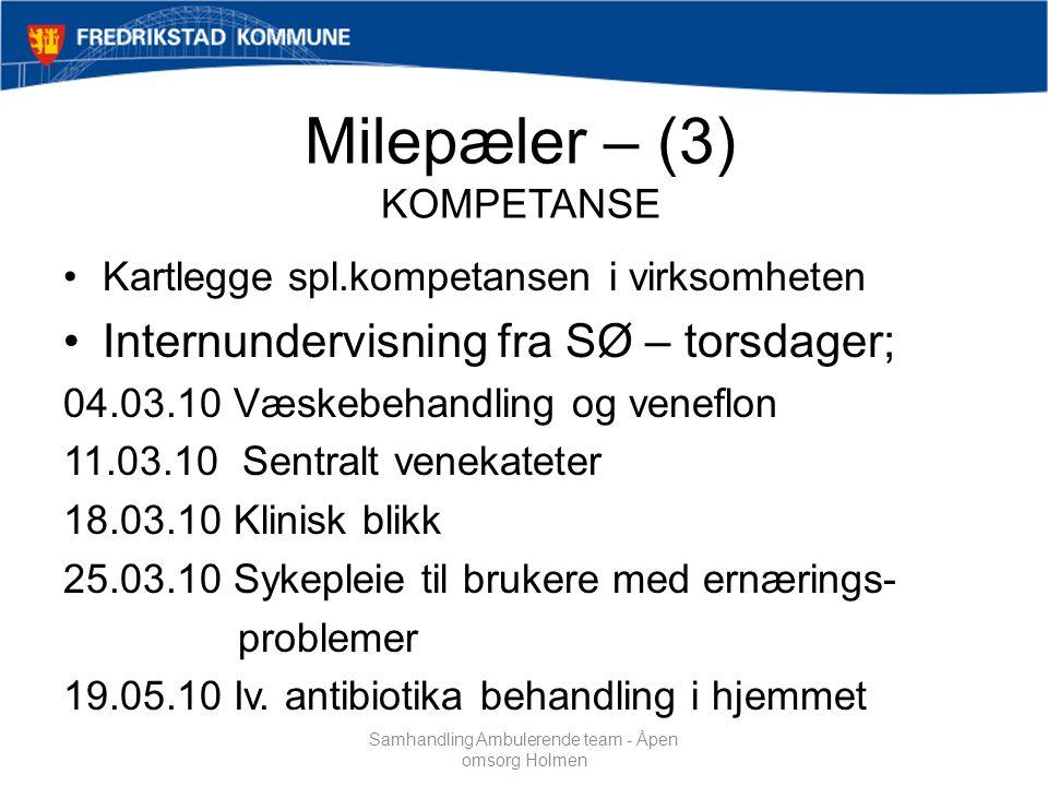 Milepæler – (3) KOMPETANSE