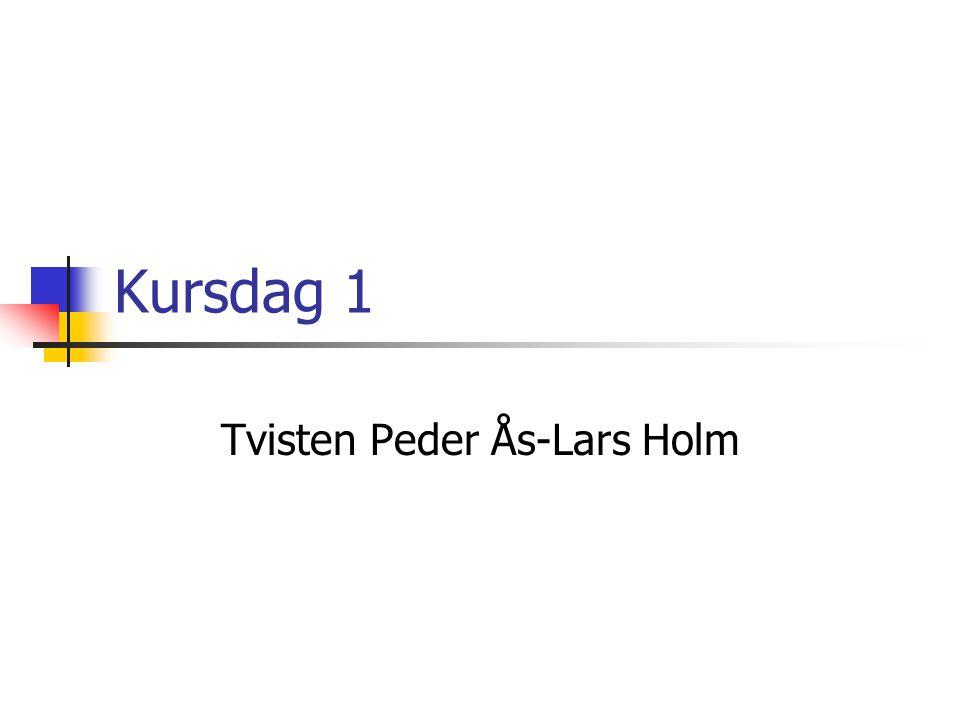 Tvisten Peder Ås-Lars Holm