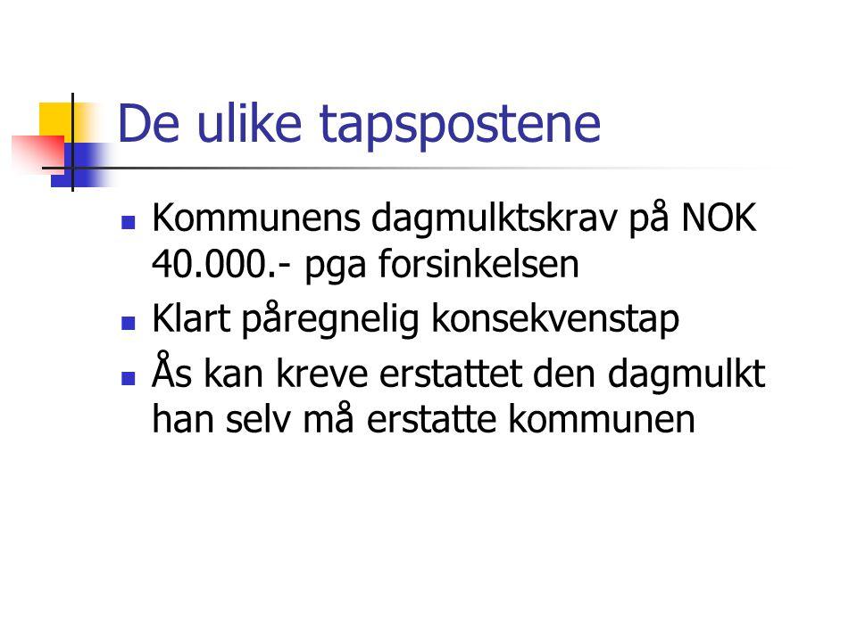 De ulike tapspostene Kommunens dagmulktskrav på NOK 40.000.- pga forsinkelsen. Klart påregnelig konsekvenstap.