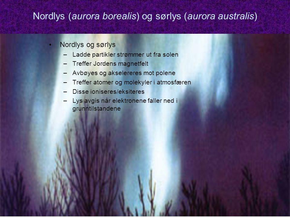 Nordlys (aurora borealis) og sørlys (aurora australis)