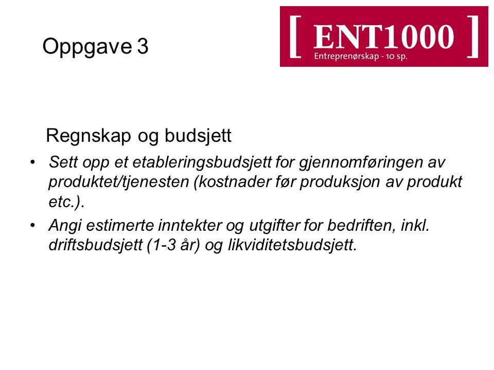 Oppgave 3 Regnskap og budsjett