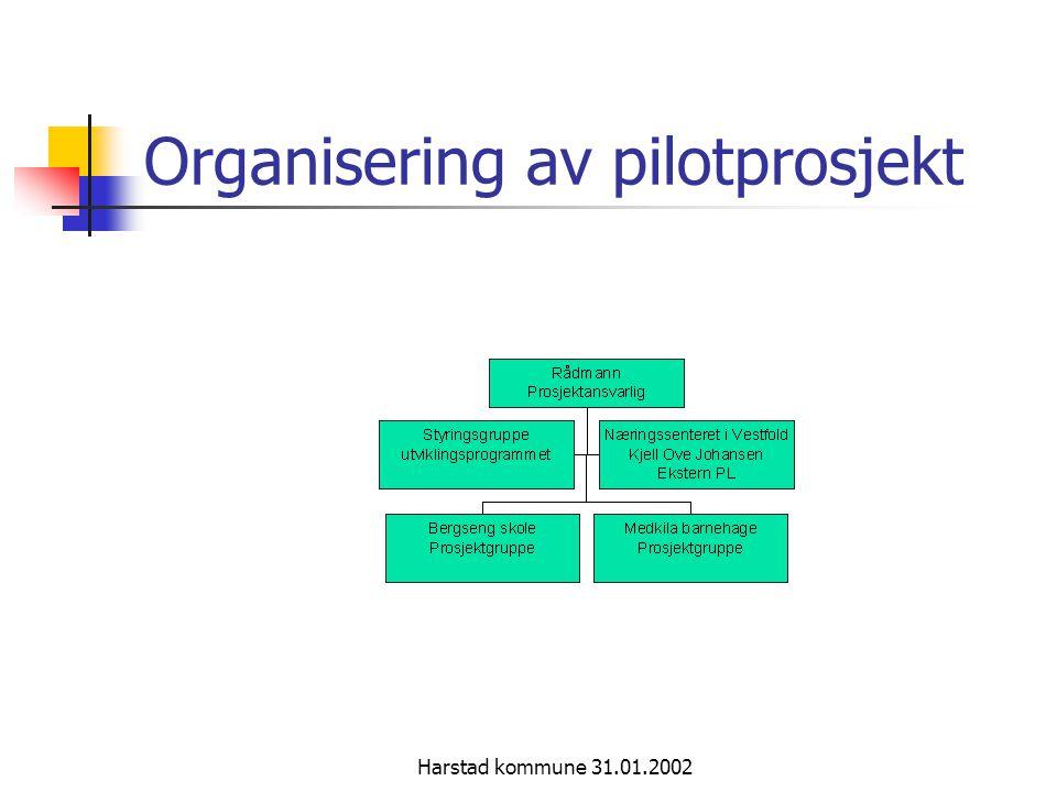 Organisering av pilotprosjekt