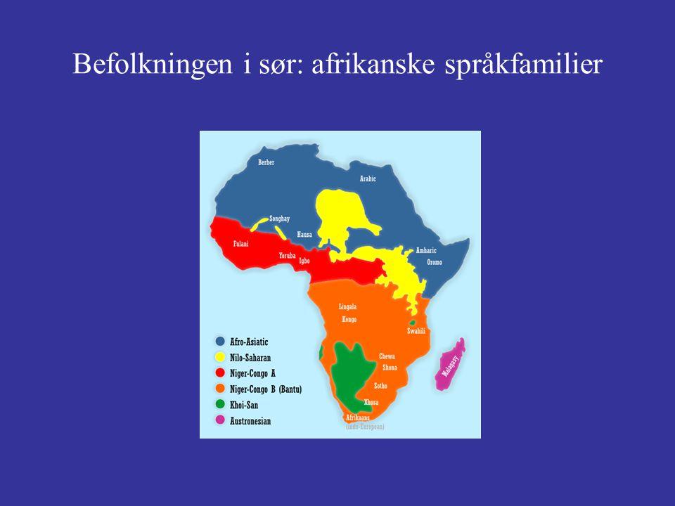 Befolkningen i sør: afrikanske språkfamilier