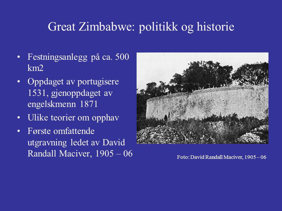 Great Zimbabwe: politikk og historie