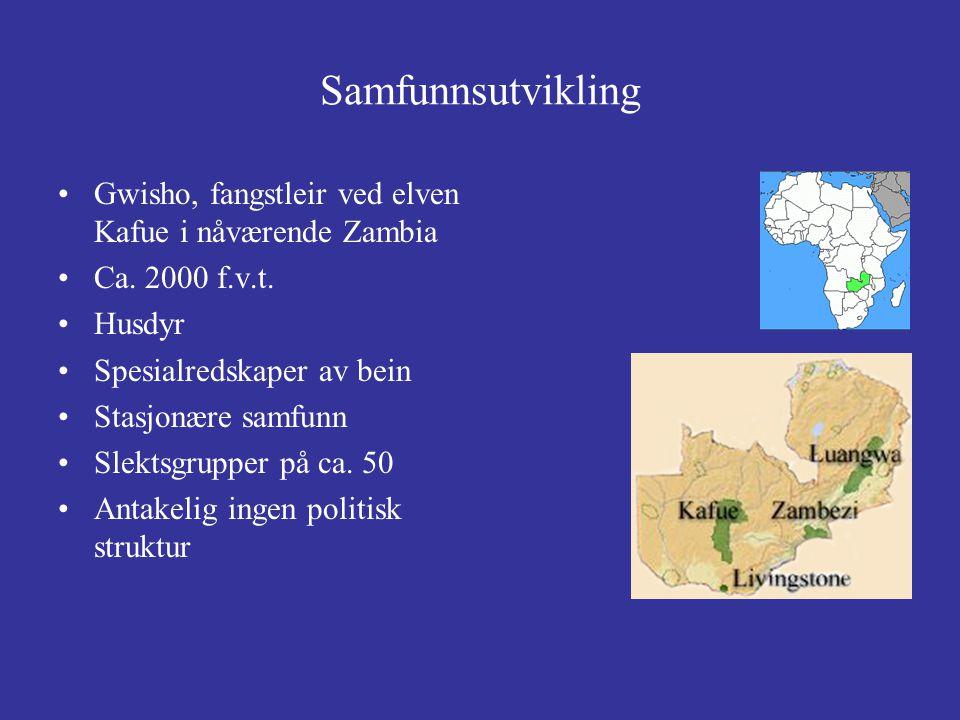 Samfunnsutvikling Gwisho, fangstleir ved elven Kafue i nåværende Zambia. Ca. 2000 f.v.t. Husdyr. Spesialredskaper av bein.