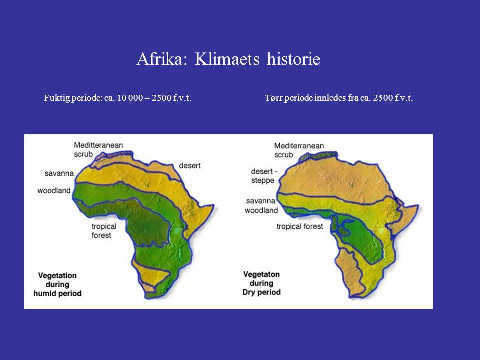 Afrika: Klimaets historie Fuktig periode: ca. 10 000 – 2500 f. v. t