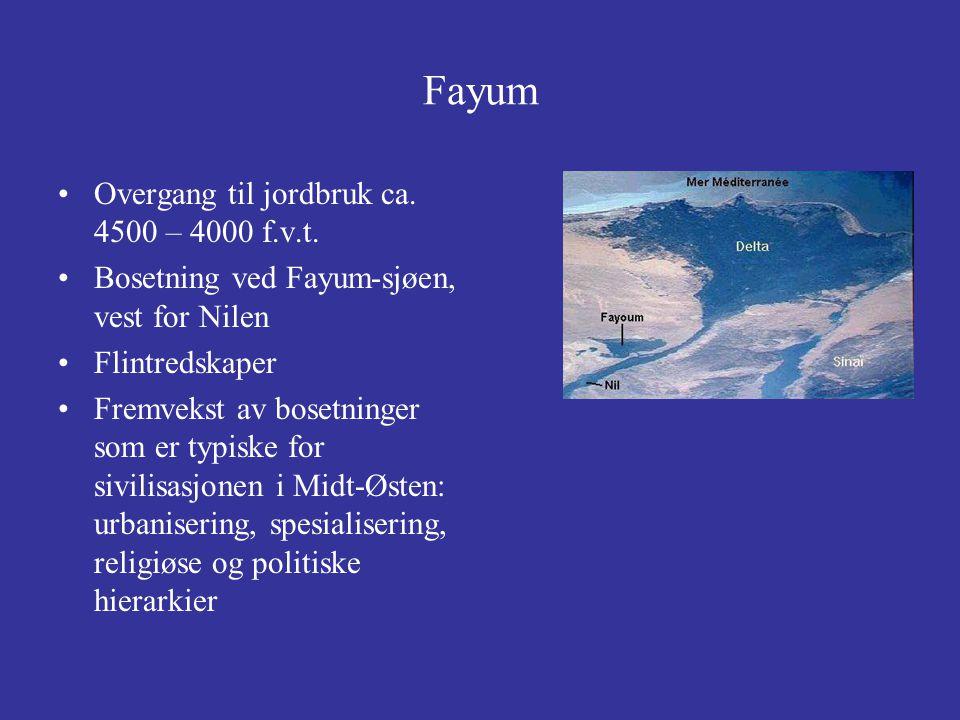 Fayum Overgang til jordbruk ca. 4500 – 4000 f.v.t.
