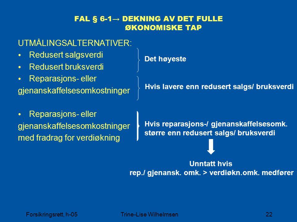 FAL § 6-1→ DEKNING AV DET FULLE ØKONOMISKE TAP