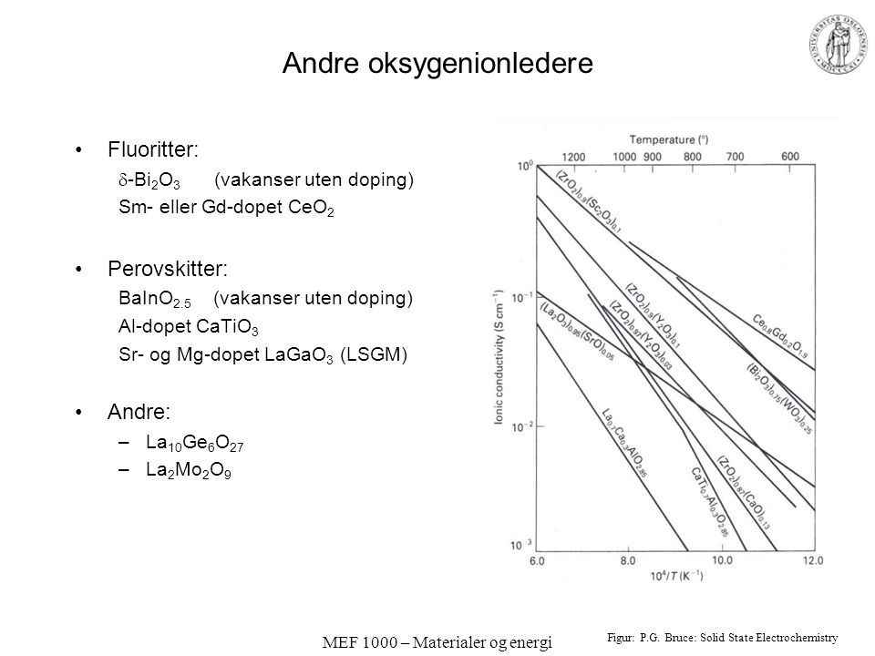 Andre oksygenionledere