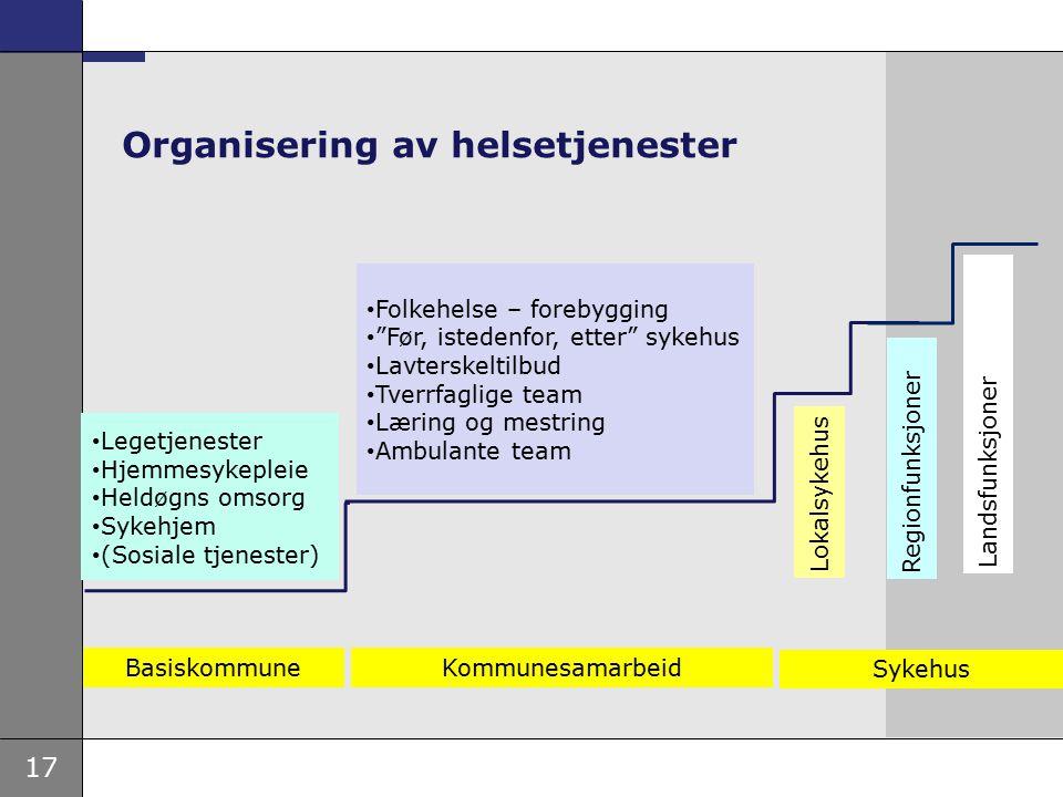 Organisering av helsetjenester
